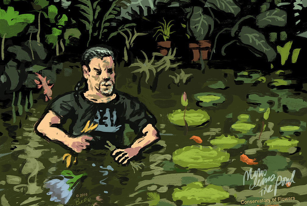 Mario Amongst the Water Lillies